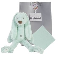 Knuffel Rabbit Richie Mint 38 cm